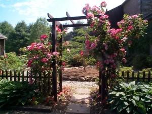 Garden Design- Rose Garden