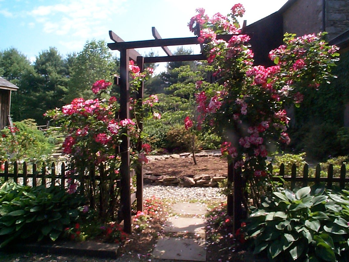 Garden Design Bucks County Rose Garden Blog Stone Creek
