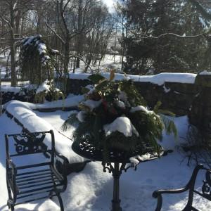 Winter Color pic 7